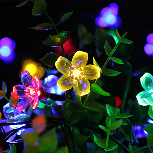 LUCKLED-Flower-Outdoor-Solar-String-Lights-21ft-50-LED-Multi-Color-Fairy-Blossom-Christmas-Lights-Decorative-Lighting-for-Indoor-Home-Garden-Patio-Lawn-Party-and-Holiday-Decorations-0-0